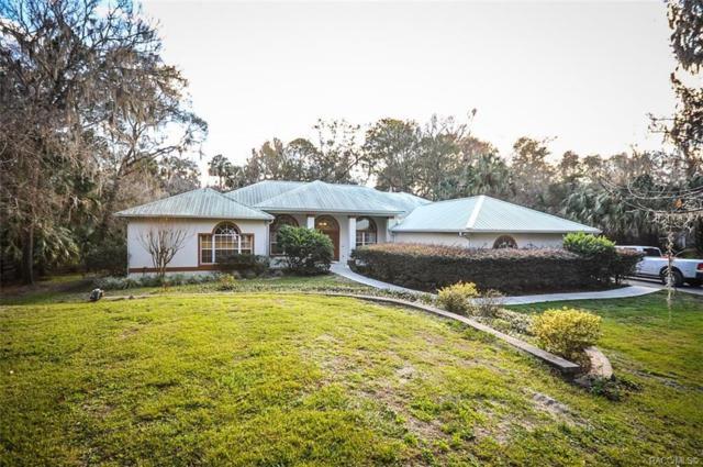 94 Winding River Lane, Inglis, FL 34449 (MLS #779787) :: Pristine Properties