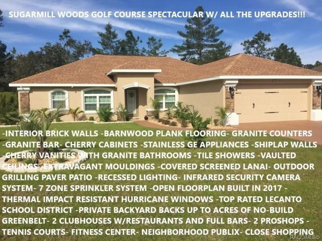 10 Vinca Street, Homosassa, FL 34446 (MLS #779438) :: Plantation Realty Inc.