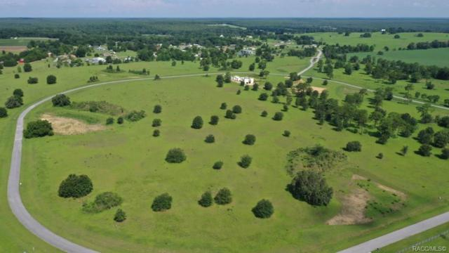 5196 E Lighthorse Circle, Inverness, FL 34452 (MLS #718914) :: Plantation Realty Inc.