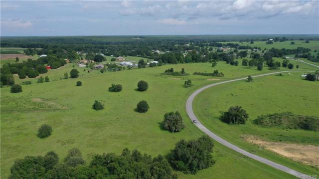 5247 E Lighthorse Circle, Inverness, FL 34452 (MLS #718916) :: Plantation Realty Inc.
