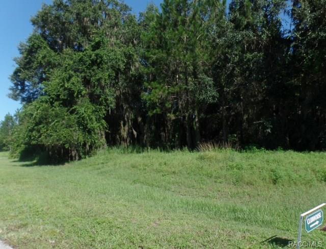 2792 N Folkestone Loop, Hernando, FL 34442 (MLS #770048) :: Plantation Realty Inc.