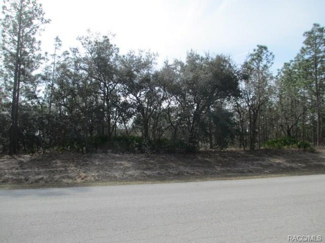 3762 N Grayhawk Loop, Lecanto, FL 34461 (MLS #770211) :: Plantation Realty Inc.