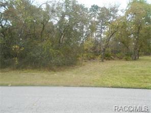 5988 S Willmette Point, Homosassa, FL 34446 (MLS #770475) :: Plantation Realty Inc.
