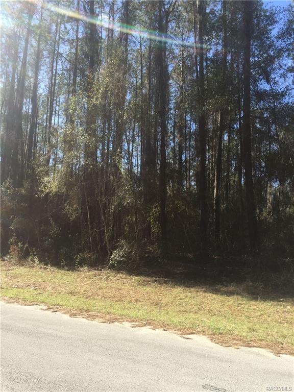 8512 N Alameda Drive, Citrus Springs, FL 34434 (MLS #770557) :: Plantation Realty Inc.