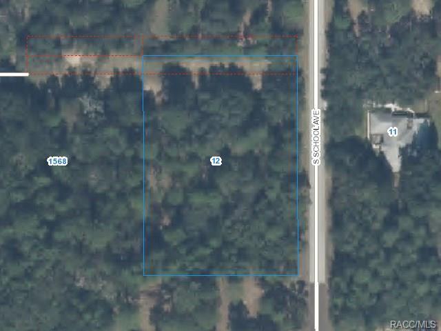 12 S School Avenue, Lecanto, FL 34461 (MLS #770868) :: Plantation Realty Inc.