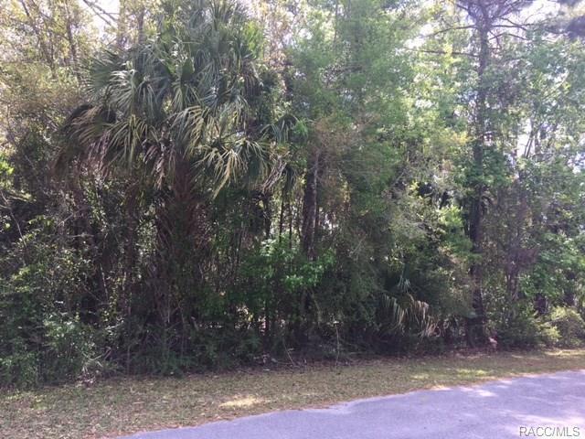 4375 N Weewahi Point, Crystal River, FL 34428 (MLS #771458) :: Plantation Realty Inc.