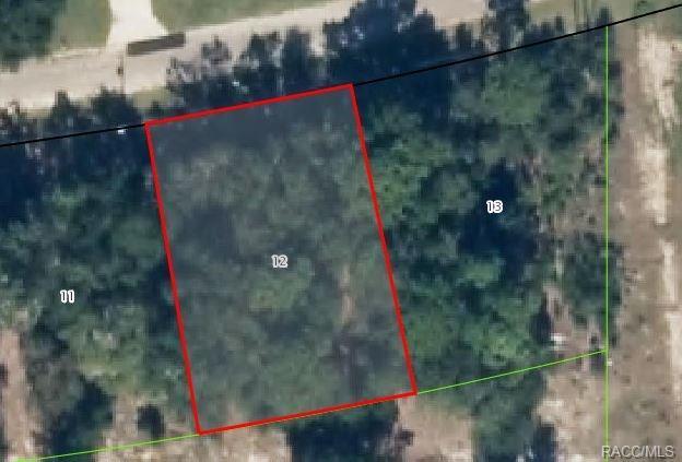 11214 N Terra Cotta Drive, Citrus Springs, FL 34434 (MLS #772099) :: Plantation Realty Inc.