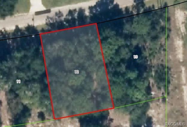 11222 N Terra Cotta Drive, Citrus Springs, FL 34434 (MLS #772100) :: Plantation Realty Inc.
