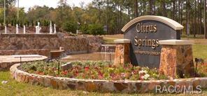 1368 W Newbury Street, Citrus Springs, FL 34434 (MLS #772112) :: Plantation Realty Inc.