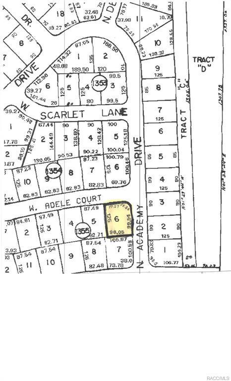 1364 W Adele Court, Citrus Springs, FL 34434 (MLS #772190) :: Plantation Realty Inc.