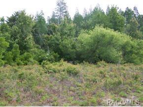 7581 W Gulf-To-Lake Highway, Crystal River, FL 34429 (MLS #772362) :: Plantation Realty Inc.