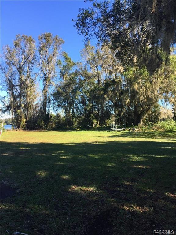 6694 S Merleing Loop, Floral City, FL 34436 (MLS #773582) :: Plantation Realty Inc.