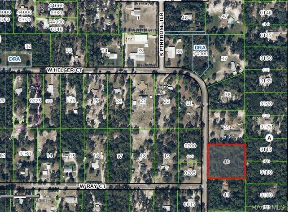 2443 S Pine Ridge Avenue, Homosassa, FL 34448 (MLS #773786) :: Plantation Realty Inc.