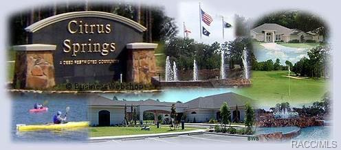 5650 N Mock Orange Drive, Beverly Hills, FL 34465 (MLS #774456) :: Plantation Realty Inc.