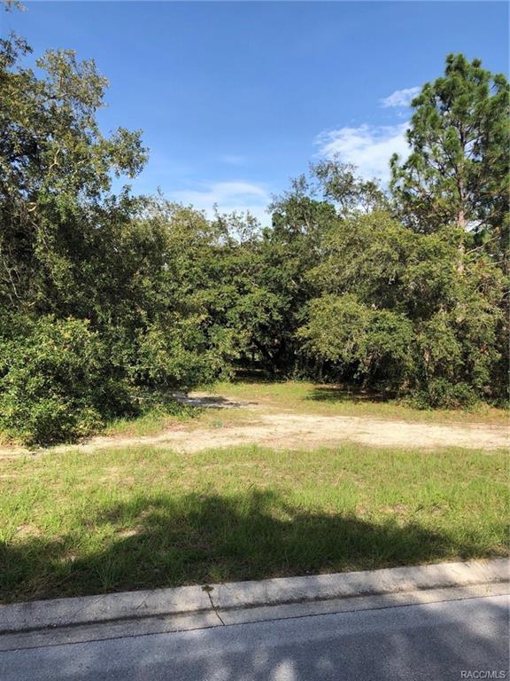 2549 N Troon Path, Lecanto, FL 34461 (MLS #774477) :: Plantation Realty Inc.