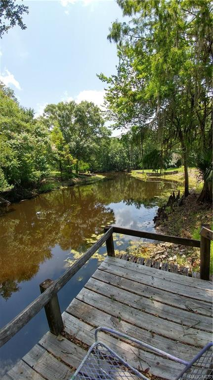 585 S Little John Avenue, Inverness, FL 34450 (MLS #774576) :: Plantation Realty Inc.