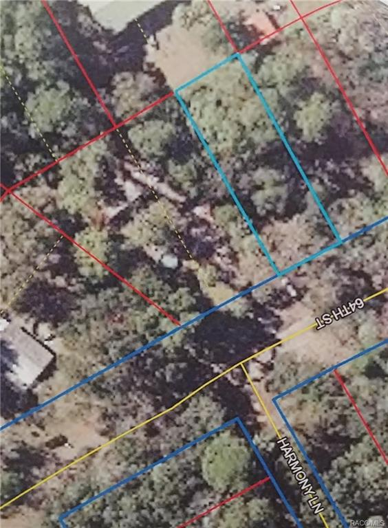 Yankeetown, FL 34498 :: Plantation Realty Inc.
