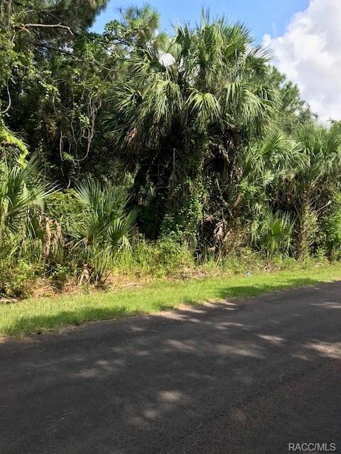 8213 W Ox Eye Place, Homosassa, FL 34448 (MLS #775483) :: Plantation Realty Inc.