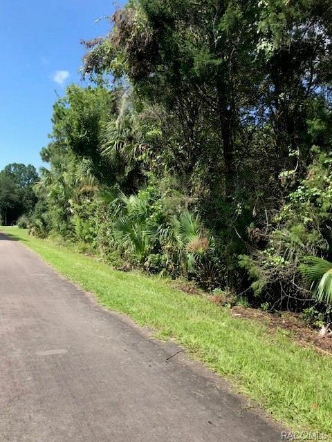 1103 N Fan Palm Point, Crystal River, FL 34429 (MLS #775484) :: Plantation Realty Inc.