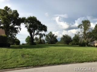 1711 N Wembley Drive, Crystal River, FL 34429 (MLS #775526) :: Plantation Realty Inc.
