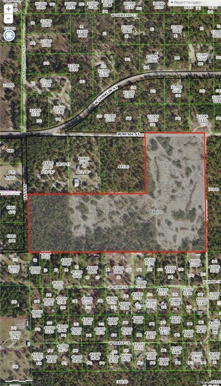 6700 W Nessi Street, Dunnellon, FL 34433 (MLS #775620) :: Plantation Realty Inc.