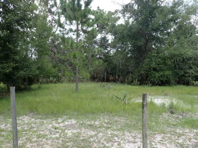 11441 N Lamar Point, Inglis, FL 34449 (MLS #775860) :: Plantation Realty Inc.