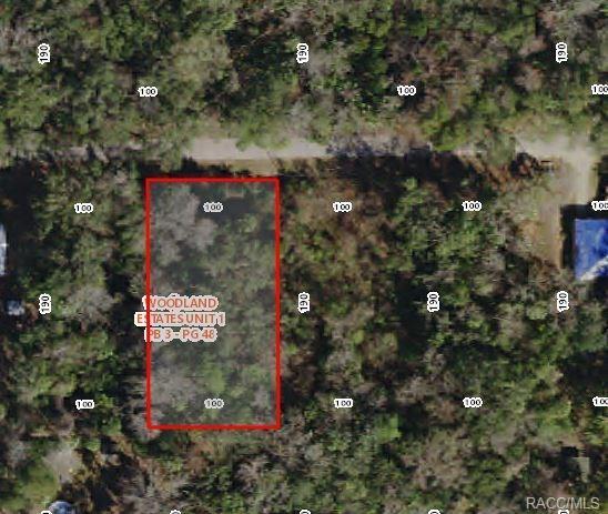 TBD NW 20th Street, Crystal River, FL 34428 (MLS #776150) :: Plantation Realty Inc.