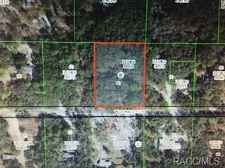 4331 W Donali Court, Homosassa, FL 34446 (MLS #776425) :: Plantation Realty Inc.