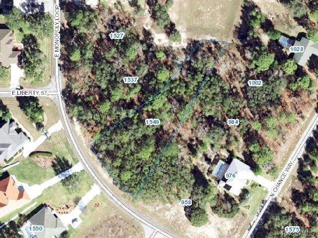 1549 E Monopoly Loop, Inverness, FL 34453 (MLS #776673) :: Plantation Realty Inc.