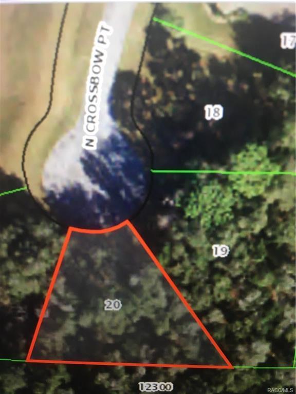 2719 N Crossbow Point, Hernando, FL 34442 (MLS #777011) :: Plantation Realty Inc.
