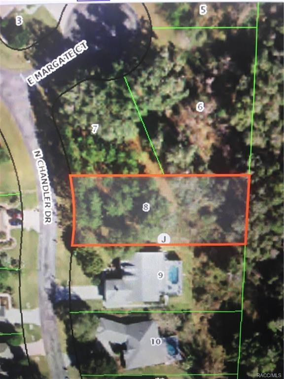 3758 N Chandler Drive, Hernando, FL 34442 (MLS #777014) :: Plantation Realty Inc.