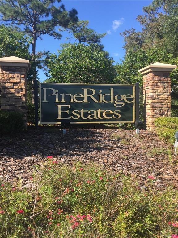 4341 N Saddletree Drive, Beverly Hills, FL 34465 (MLS #777278) :: Plantation Realty Inc.