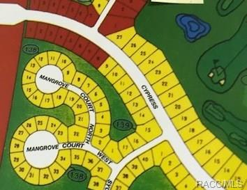 13 Mangrove Court N, Homosassa, FL 34446 (MLS #777485) :: Plantation Realty Inc.