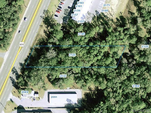 2123 N Lecanto Highway, Lecanto, FL 34461 (MLS #778072) :: Plantation Realty Inc.