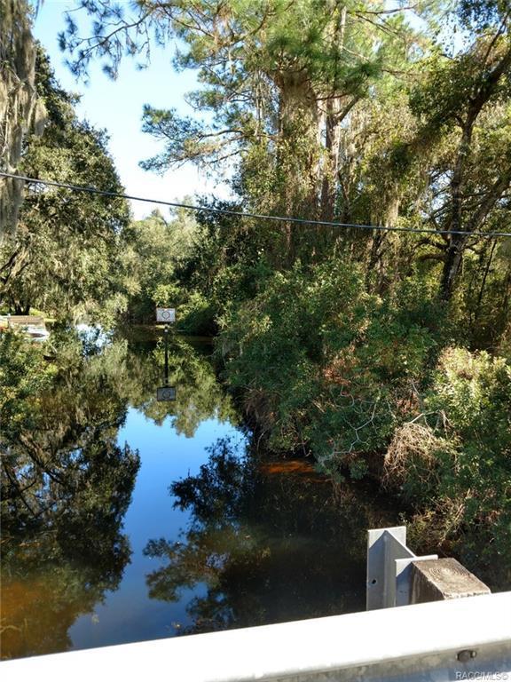 6175 Bayfront Drive, Hernando, FL 34442 (MLS #778303) :: Plantation Realty Inc.