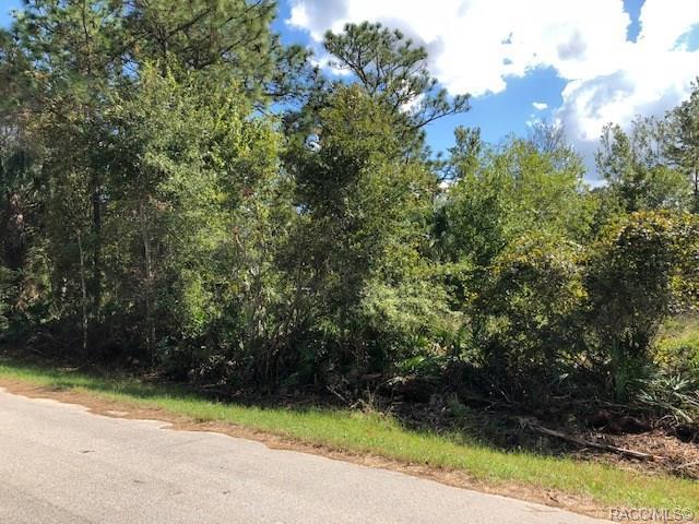 7652 W Pedersen Loop, Homosassa, FL 34446 (MLS #778434) :: Plantation Realty Inc.
