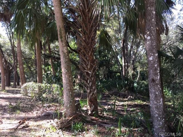 0 Lois Street, Inglis, FL 34449 (MLS #778449) :: Plantation Realty Inc.