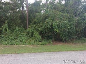 1752 E Pacific Lane, Inverness, FL 34453 (MLS #778791) :: Plantation Realty Inc.