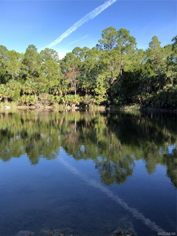 0 W 40 Highway, Yankeetown, FL 34498 (MLS #778915) :: Plantation Realty Inc.
