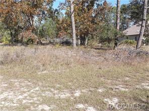 28 Village Center Drive, Homosassa, FL 34446 (MLS #778918) :: Plantation Realty Inc.
