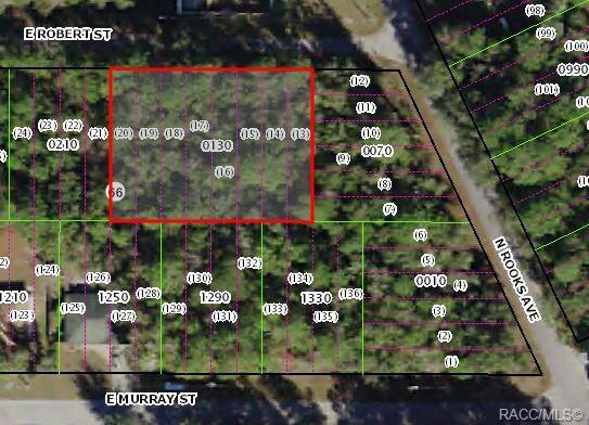 3378 E Robert Street, Inverness, FL 34453 (MLS #779283) :: Plantation Realty Inc.