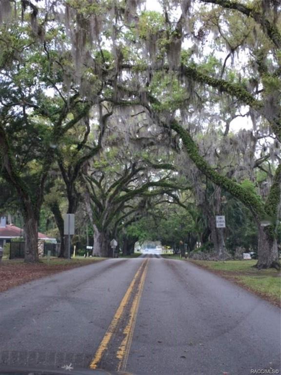 237 NW Crystal Street, Crystal River, FL 34428 (MLS #780036) :: Plantation Realty Inc.