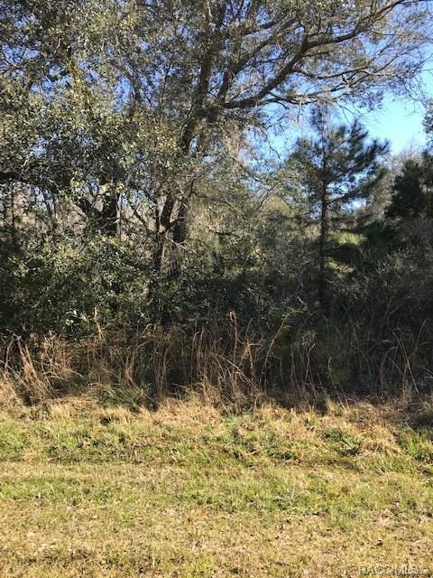 9599 N Cavewood Avenue, Crystal River, FL 34428 (MLS #780140) :: Plantation Realty Inc.
