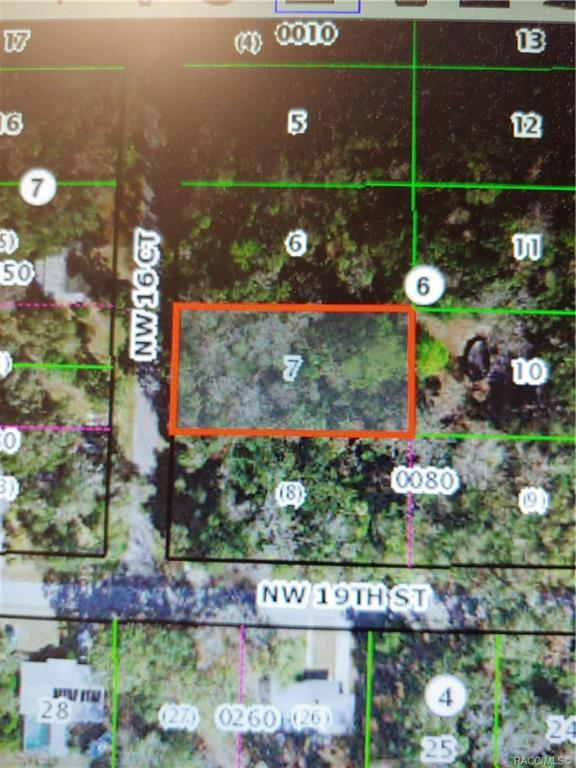 0000 NW 16th Court, Crystal River, FL 34428 (MLS #780284) :: Plantation Realty Inc.