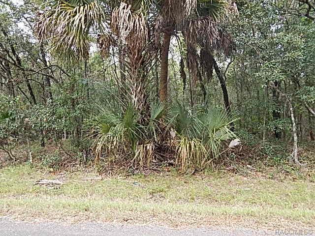 6869 W Van Buren Drive E, Homosassa, FL 34446 (MLS #780498) :: Plantation Realty Inc.