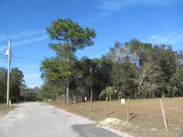 5067 S Pastel Point, Homosassa, FL 34446 (MLS #780502) :: Plantation Realty Inc.