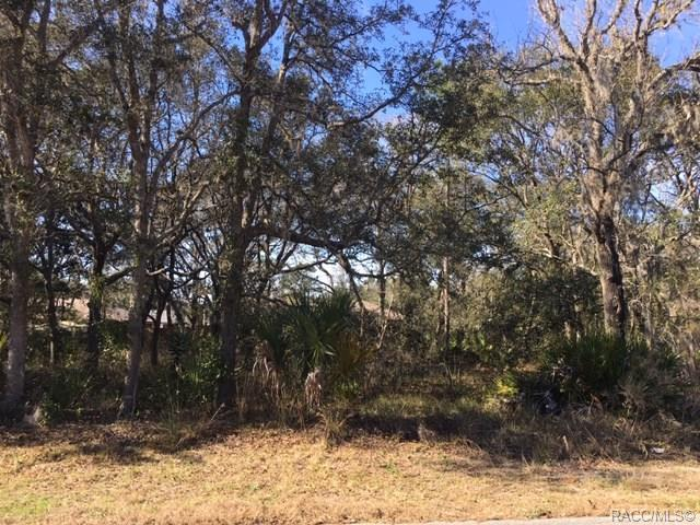 5334 S Memorial Drive, Homosassa, FL 34446 (MLS #780615) :: Plantation Realty Inc.