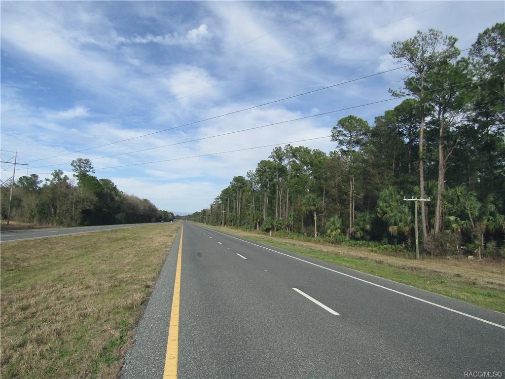 0000 U.S. 19 Highway - Photo 1