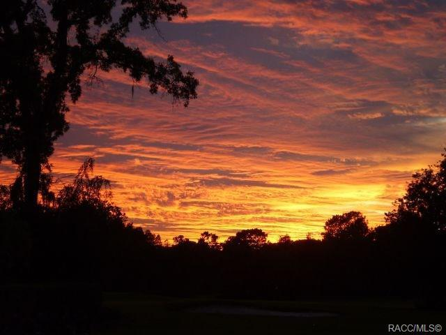 0 N N Country Club Drive, Crystal River, FL 34429 (MLS #780864) :: Plantation Realty Inc.