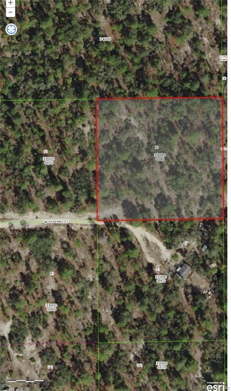 5787 W Stockel Court, Dunnellon, FL 34433 (MLS #780975) :: Plantation Realty Inc.